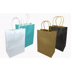 Lot de 12 Sacs en Papier Kraft de Couleur - 20 x 15 x 6 cm